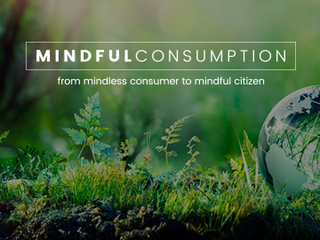 Mindful Consumption Thesis